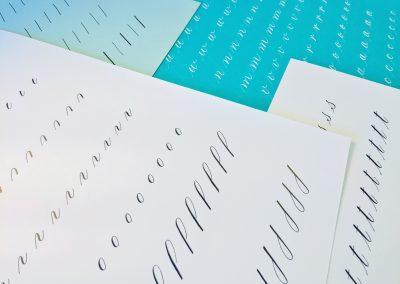 Beginner Copperplate Calligraphy Complete Worksheet Set Lowercase