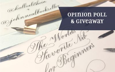 Opinion Poll: The World's Favorite Nib for Beginners